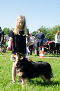 Tholie og Nanna i Barn og Hund - de vandt også BIS!