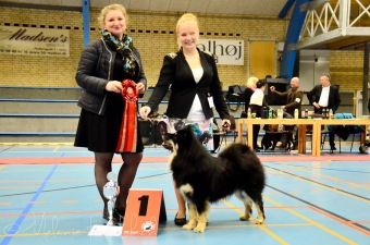 BEST IN SHOW Sæby!