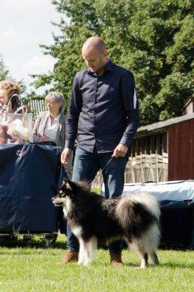 Ole med Dexter på udstilling i Odense