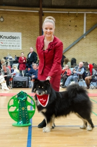 Number 4 All breeds in the Spitz Specialty Club!